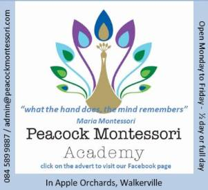 Peacock Montessori Academy in Walkerville